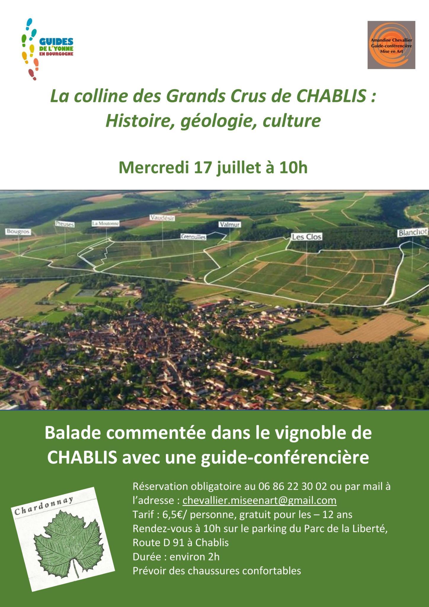 Flyer balade vingoble 2019-page-001